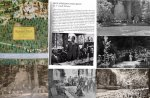 Image result for colin powell bohemian grove